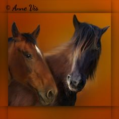 Anne Vis Animal Art Gallery - Portrait of two horses #horses #horse #art #fineart #painting