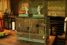 I love and old birdcage like this