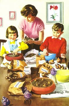 Bulbs - Helping At Home - Ladybird Books 1961