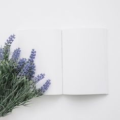 Book cover mockup with natural flowers Free Photo Flower Backgrounds, Photo Backgrounds, Background Images, Wallpaper Backgrounds, Iphone Wallpaper, Minimal Photography, Flat Lay Photography, Framed Wallpaper, Flower Wallpaper