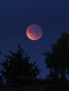 The first of four consecutive total lunar eclipses takes place on the night of April 14–15, with excellent viewing prospects all across the U.S. and Canada.