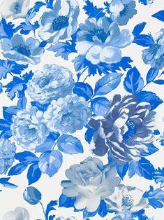 Designers Guild (Alexandria Wallpaper Roseus in Cobalt)