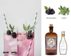 Monkey 47 Gintonic Recept