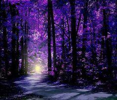 IL MONDO DI KrisBi: Il destino trova sempre la sua strada.      ...