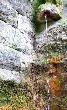the external spring at the White Spring, Glastonbury.  I plan to go to Glanstonbury on a pilgrimage one year.