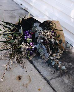 NESST . Est 2011 . (@thenesst) on Instagram Succulents, Bloom, Birthday, Instagram Posts, Plants, Birthdays, Succulent Plants, Dirt Bike Birthday, Plant