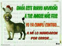 Burro navideño