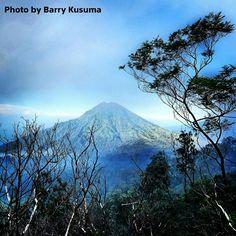Gunung Meranti, Banyuwangi