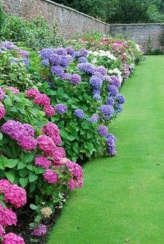 Gorgeous full sun landscaping ideas (45)