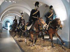 Bildresultat för hästraser från asien