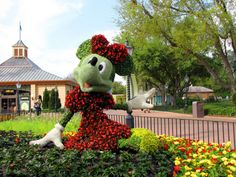 Minnie Topiary    https://www.facebook.com/TiaraTravels