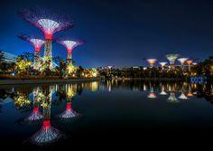Gardens by the Bay, Cingapura