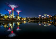 Gardens by the Bay, Cingapura