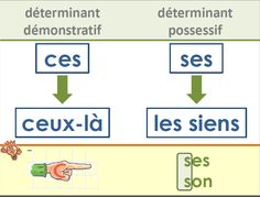 French homophones posters - Affichages homophones - français
