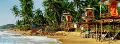 India in November culture, outdoors, relaxing, romantic, beaches, historic sites, museums, shopping, wildlife