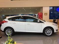 Bảo hiểm xe Ford Focus