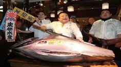 #موسوعة_اليمن_الإخبارية l ثاني اغلى سمكة في القرن الـ 21