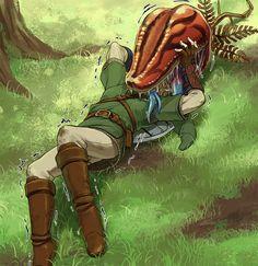 Oh dear. Link being eated by a Deku Baba. The Legend Of Zelda, Legend Of Zelda Memes, Majora Mask, Zelda Twilight Princess, Fanart, Skyward Sword, Zelda Skyward, Link Zelda, Breath Of The Wild