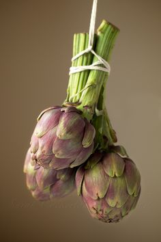food styling | vegetables: artichoke . Gemüse: Artischocke . légume: artichaud | photo: Sarah Cockerton |