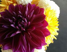Gorgeous summer dahlias in a vase at a cafe..stunning.