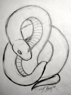 snake tattoo tattoos drawing snakes designs simple sketch easy drawings sketches animal cool visit uploaded user