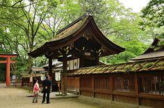 Kawai Jinja Shrine, Kyoto / 京都・河合神社