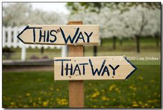 This Way, That Way II