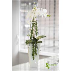 Arreglo de orquídea blanca en base vertical.