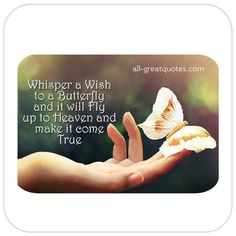 Whisper-a-Wish-to-a-Butterfly-and-it-will-Fly-up-to-Heaven-and-make-it-come-True.jpg