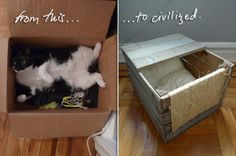 Cat bed box