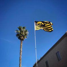 Hawkeye Pride flies high in beautiful San Diego. Further proof that Hawkeye Nation is everywhere. ⚫
