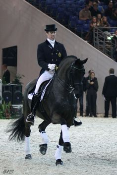 Equestrian helmets might not be the most significant style feeling today, but there are some stories behind them. Horse Riding Gear, Horse Gear, Riding Helmets, Dressage Horses, Friesian Horse, English Riding, Horse World, Show Jumping, Horse Breeds