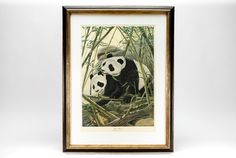 """John Ruthven """"Giant Pandas"""" Signed Lithograph ▃▃▃▃▃▃▃▃ Signed and numbered lithograph print titled """"Giant Pandas"""" plate III, by listed Artist John Aldrich Ruthven (born November 12, 1924 in Cincinnati, Ohio). Ruthvan is an American artist best known for his paintings of wildlife. His wildlife paintings are on display at many museums including the Smithsonian Institution, and his work was featured in a 1994 retrospective at the Cincinnati Museum of N"""