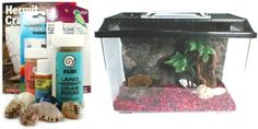 Deluxe Hermit Crab Kit with Tank