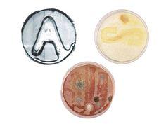 symbiosis   Drukwerk is meestal slecht voor het milieu, soja-inkt en natuurlijke pigmenten ontzien het milieu enigszins. Jelte van Abbema gaat nog een stap verder. Zijn fascinatie voor de natuur inspireerde hem om de mogelijkheden van bacteriën in onze beeldcultuur te onderzoeken.