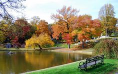 Mille Fiori Favoriti: Autumn Trees in Green-Wood Cemetery Greenwood Cemetery, Autumn Scenes, Places To Visit, Trees, Outdoor Decor, Blog, Beautiful, Tree Structure, Blogging