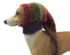 Mans Best Friend, Best Friends, Large Dog Clothes, Must Have Gadgets, Large Dogs, Pet Supplies, Knitted Hats, Winter Hats, Lurcher