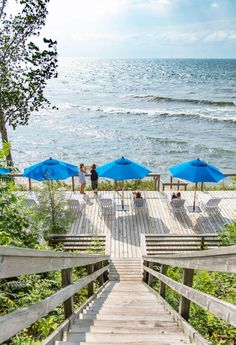 Lake Shore's motor-inn vibe is the real deal—more than half a century after Joseph and Anna Milauckas built it in 1952 in Saugatuck, Michigan. Lakeside Lodge, Lakeside Resort, Lake Resort, Hills Resort, Lutsen Resort, West Baden Springs Hotel, Kelleys Island, Elkhart Lake, Saugatuck Michigan