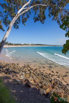 Noosa Beach, Queensland, Australia. Put this beach on your Australia bucket list. Click inside to see why!