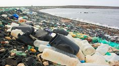 """""""Oceans laden with 269,000 tons of plastic"""": International study 
