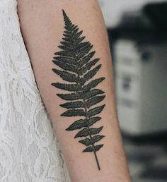 Tattoo Fern on Arm