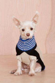 Dusen Dusen White Landscape Alpaca Dog Sweater. OMG my dogs Grandma (my mom)…