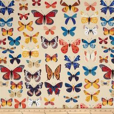 Natural History Butterflies Cream from @fabricdotcom  Designed by Lizzy House for Andover, this cotton print fabric is perfect for quilting, apparel and home decor accents. Colors include black, brown, orange, cream, pink, yellow, white, shades of blue, and shades of red.