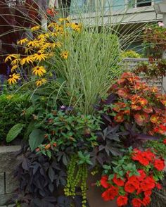 DESIGN SECRETS FOR OVER-THE-TOP POTS http://www.finegardening.com/designer-secrets-over-top-pots Learn the dos and don'ts of creating jaw-dropping containers. As a professional container designer, I have a few customers who want the biggest and best containers on the block. They like the attention, and they love to report that people stop to gawk and sometimes take pictures ..