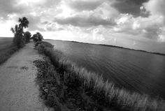 McQueen's Island trail