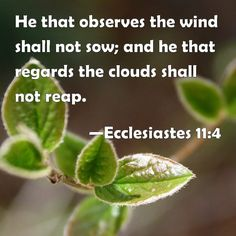 Ecclesiastes 11:4 ~ Farmers who wait for perfect weather never plant. If they watch every cloud, they never harvest. (NLT)