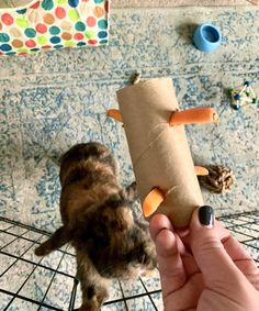 Do you know these rabbit facts. Pet bunnies and house rabbits are intelligent animals capable of bonding with other breeds and animals, including humans. Diy Toys For Rabbits, Diy Bunny Toys, Rabbit Cages Outdoor, Rabbit Hutch Indoor, Diy Bunny Cage, Bunny Cages, Rabbit Toys, Pet Rabbit, Rabbit Pen