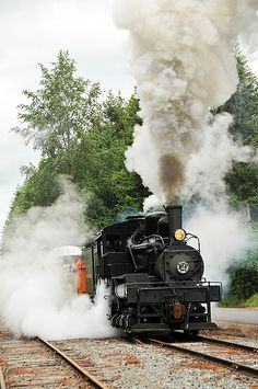 Mount Rainier Scenic Railroad. Fun!  Especially enjoy it in Fall!