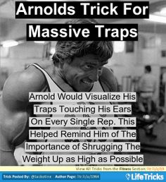 Fitness - Arnolds Trick to Massive Traps