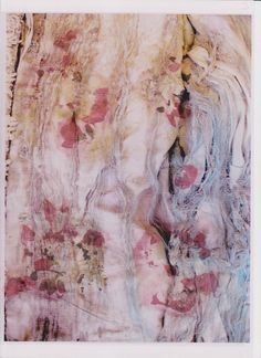 Digital print fabric from heat pressed flowers and digital photos 2011